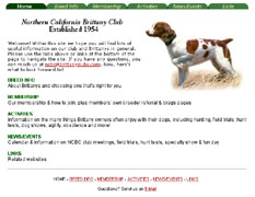 Northern CA Brittany Club